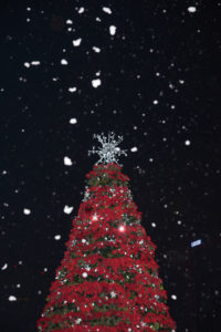 Snow may once again be in the forecast this year during the annual tree lighting Dec. 3. (Courtesy Olive PR Solutions)